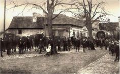 restaurace Na Špici, 1910