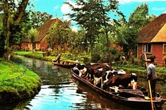 Gierthoorn is a village in the Dutch province of Overijssel.  The village has no roads.