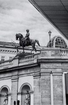 Многие туристы приходят в Хофбург с единственной целью — полюбоваться белоснежными лошадьми липиццианской породы в Испанской школе верховой езды. Louvre, Building, Travel, Viajes, Buildings, Destinations, Traveling, Trips, Construction