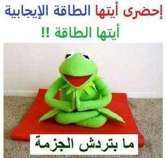 Mens Womens Humor : Kermit Quotes The Dalai Lama. Dalai Lama, Frog Quotes, Life Quotes, Success Quotes, Paz Interior, Kermit The Frog, Inner Peace, Good Mood, Make Me Smile