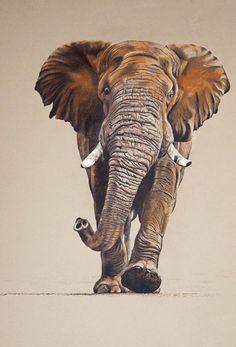 Pastel - Warren Cary Wildlife Artist #OilPaintingElephant