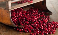 What's in Season: Cranberries - Paula Deen Cranberry Recipes, Fruit Recipes, Fall Recipes, Holiday Recipes, Christmas Recipes, Christmas Ideas, Recipies, Hawaiian Sweet Breads, Cream Of Celery