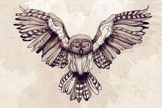 Owl Drawings Vintage | owl # art # doodle # drawing