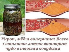 Укроп, мёд и валериана (600x454, 88Kb)