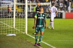 BLOG - Com  Jornalismo Levado a Sério. - BISPO MAGALHÃES: BRASILEIRÃO 2016 - Palmeiras perde do Santos na Vi...