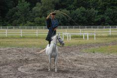 Bugac Puzsta - Horse show Show Horses, Hungary, Goats, Animals, Animales, Animaux, Animal, Animais, Race Horses