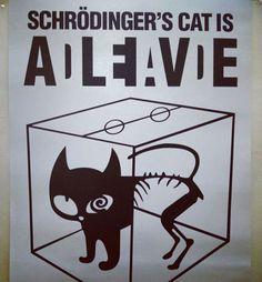 Schrödinger's Possibilities