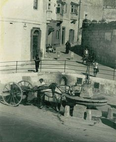 A horse stops for a drink from a water trough intended for horses, in front of the McDonalds in Triq il-Wied, Birkirkara, Malta. Malta History, Malta Valletta, Water Trough, Malta Island, Mcdonalds, Maltese, Old Photos, The Past, Horses