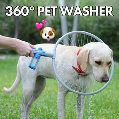 360° Pet Washer – Pretty Little Sale Cat Backpack, Thing 1, Natural Shampoo, Water Spray, Water Lighting, Fat Cats, Washer, Flexibility, Dog Cat