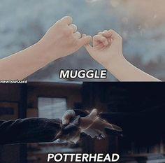 23 Ideas Funny Jokes Disney Harry Potter For 2019 Harry Potter World, Blaise Harry Potter, Images Harry Potter, Arte Do Harry Potter, Harry Potter Puns, Harry Potter Universal, Harry Potter Fun Facts, Harry Potter Children, Harry Potter Theories