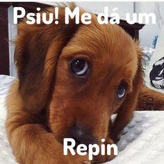 Me da um Repin aê! #repin #betalab #beta