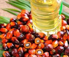 Palm oil is a kind of vegetable oil that is popular in almost all parts of the world. It is produced from the pulp of the fruit of palm tre. Edible Oil, White Kidney Beans, Food Security, Saturated Fat, Food Items, At Least, Stuffed Peppers, Fruit, Healthy