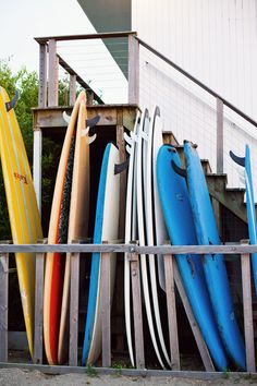 Surf Lodge | Ann Street Studio