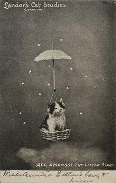"""""""All Amongst the Little Stars,"""" kitten in a flying basket, Landor's Cat Studies"""