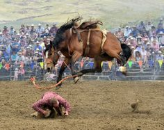 Virginia Paul's rodeo shot takes the overall prize in C's February/March Photo Contest issue.