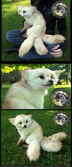 """Shyla"" - OOAK, fully poseable fantasy fox by Wood Splitter Lee Cross (SO CUTE!)"