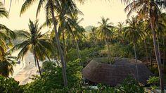 Thailand, Koh Tao: Haad Tien Beach Resort er lige lidt mere lækkert end så mange andre resorts, og du bor blandt palmer i hyggelige hytter.