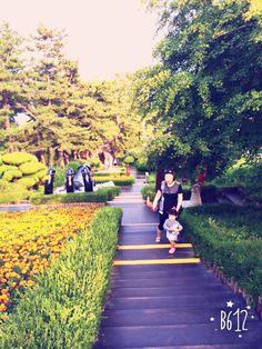 강원도삼척 Dolores Park, Travel, Viajes, Destinations, Traveling, Trips