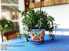Blumengef aus mexiko rund handbemalt mit farbenfrohen for Mexikanische dekoration