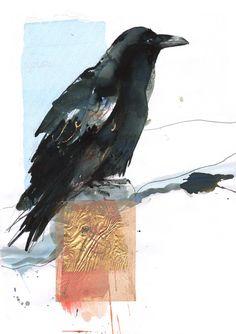 """Saatchi Online Artist: Lucy Newton; """"raven"""""""