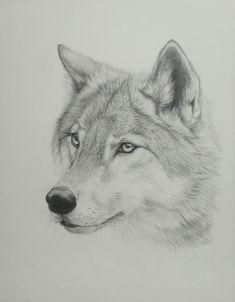 Resultados da Pesquisa de imagens do Google para http://www.deviantart.com/download/124204591/Wolf_Drawing__by_PaNdAz333.jpg