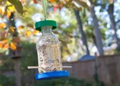It's time to raid the recycle bin and up-cycle those discarded items into a bird feeder!