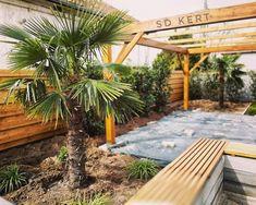 #sdkert®️ #gardenlove #gardening #kertépítés #kerttervezés #garten #landscape #kertszépítő #palmtrees🌴 Pergola, Land Scape, Outdoor Structures, Instagram, Lawn And Garden, Outdoor Pergola