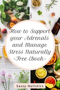 How to Support your Adrenals and Manage Stress Naturally Ebook Anxiety Remedies, Sleep Remedies, Natural Remedies For Anxiety, Health Advice, Health And Wellness, Slow Metabolism, Natural Stress Relief, Adrenal Fatigue, Stress Management
