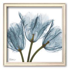 Art.com Tulips in Blue Framed Art Print by Albert Koetsier, Multicolor