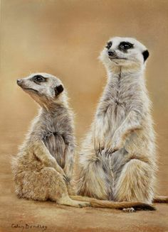 Meerkats drawn using Faber-Castell Pastel Pencils: http://www.colinbradleyart.co.uk/home/about-us/picture-gallery/