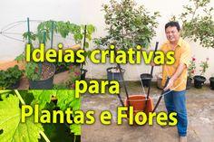 Dicas Plantas e Flores ideias Criativas , aproveite espaço para trepadei...