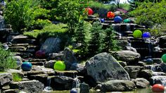 Chihuly installation at Waterfall in Meijer Gardens