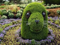 22 Marvelous Grass Sculptures   I so want this in my backyard.