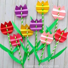 Colorful paper flowers made using lovely colors and straws