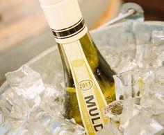 Steen op Hout on ice Champagne, Wine, Drinks, Bottle, Drinking, Beverages, Flask, Drink, Jars