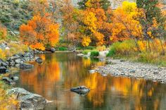 Gateway Mountain Park. 15 minutes from Fort Collins. Kayaking, canoeing, fishing, hiking, and a natural playground.