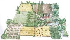5-acre-layout-complete.jpg 800×463 pixels
