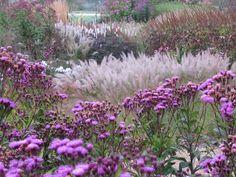 Pensthorpe Millennium Garden 09/10 - 03 by Pensthorpe Photos, via Flickr