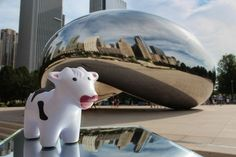 DealCow at Chicago's Bean