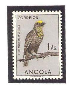 Angola 1951, 1Ag. Buccanodon anchietae. Yellow-headed barbet.
