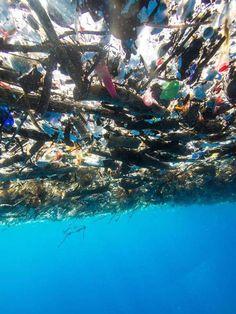 sea-of-plastic3