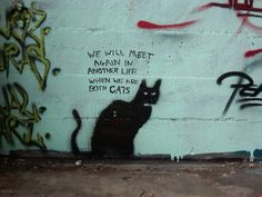 graffiti - when we are both cats. Love this...