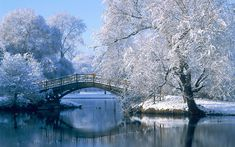 winter pictures - Google Search