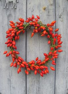 coastalcottage:  rosehip wreath   http://sutton15445.tumblr.com/  Enjoy the view from my world…My Paisley World.