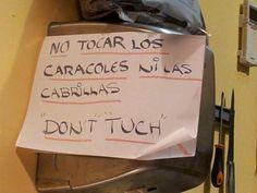 Así hablamos inglés #LenguaSevilla #PaisajeLingüístico