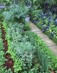 Landscape, Garden, Outdoor Decor, Plants, Scenery, Garten, Lawn And Garden, Gardens, Plant