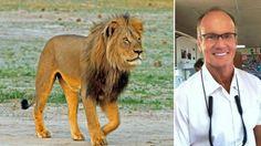 US dentist Walter Palmer 'regrets' killing Zimbabwe lion Cecil - BBC News