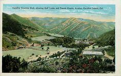 Avalon Catalina Island California CA 1920 Catalina Country Club Vintage Postcard
