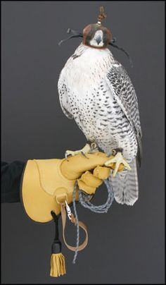 A vast selection of best quality falconry equipment and falconry telemetry equipment are available at affordable prices. Hunting Gloves, Dark Brown Color, Deer Skin, Birds Of Prey, Falcons, Hawks, Ravens, Eagles, Wings