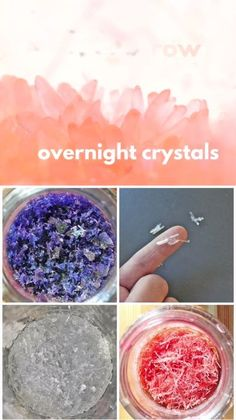Learn how to grow crystals overnight using Epsom salt! Great project for the science fair. Diy Crystal Growing, Growing Crystals, Crystal Making, Grow Your Own Crystals, How To Make Crystals, Crystals For Kids, Diy Crystals, Science Projects For Kids, Science Activities For Kids